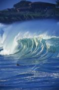 Wind Surfing Art Art - Surfer And Wave by Vince Cavataio - Printscapes