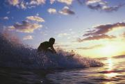 Surf Silhouette Prints - Surfer At Sunset Print by Bob Abraham - Printscapes