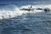 Surfer Riding A Wave Print by Brandon Tabiolo - Printscapes