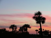 Palmetto Photos - Surfside Sunset by Al Powell Photography USA