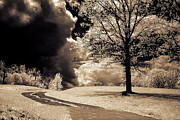 Dreamy Sepia Nature Photos Posters - Surreal Dark Gothic Infrared Sepia Landscape Poster by Kathy Fornal