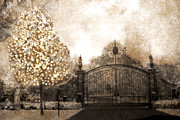 Fantasy Art Nature Photos Posters - Surreal Fantasy Haunting Gate With Sparkling Tree Poster by Kathy Fornal