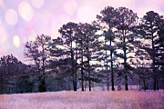 Surreal Art Photos - Surreal Fantasy Nature Purple Trees Landscape by Kathy Fornal