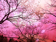 Surreal Nature And Trees Prints - Surreal Fantasy Pink Sky and Trees Nature  Print by Kathy Fornal