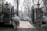 Infrared Nature Art Prints Photos - Surreal Haunting Infrared Nature Gate Scene by Kathy Fornal