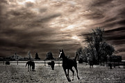 Surreal Infrared Sepia Nature Prints - Surreal Horses Infrared Nature  Print by Kathy Fornal