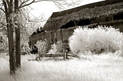 Infrared Art Prints Posters - Surreal Infrared Sepia Michigan Barn Nature Scene Poster by Kathy Fornal
