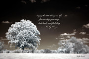 Surreal Images Prints - Surreal Infrared Trees With Inspirational Message  Print by Kathy Fornal
