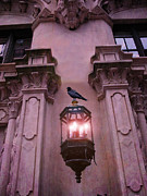 Ravens And Crows Photography Prints - Surreal Raven Gothic Lantern On Building Print by Kathy Fornal