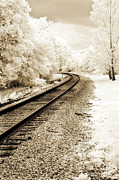 Print On Canvas Framed Prints - Surreal Sepia Infrared Landscape Railroad Tracks Framed Print by Kathy Fornal
