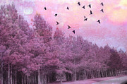 Haunting Woodlands Posters - Surreal Trees Birds Pink Fantasy Nature Poster by Kathy Fornal