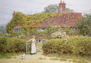 Doves Posters - Surrey Cottage Poster by Helen Allingham