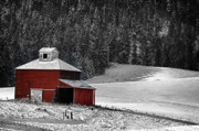 Winter Scenes Rural Scenes Prints - Surrounded by a winter snowfall Print by Eggers   Photography