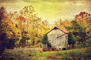 Old Barn Posters - Surrounded By Fall Poster by Kathy Jennings