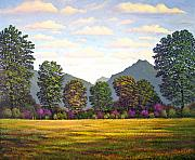 Sutter Buttes In Springtime Print by Frank Wilson