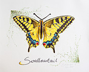 Dot Drawings Framed Prints - Swallowtail - Butterfly Framed Print by Katharina Filus