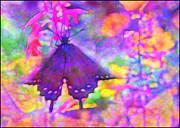 Swallowtail Print by Judi Bagwell