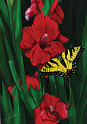 Gladiola Drawings - Swallowtail by Trish Gaines