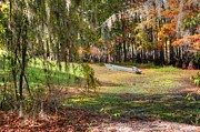 Fall Photographs Prints - Swamp Boat Day Off Print by Ester  Rogers