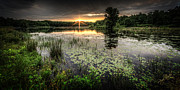 Pond Lake Photos - Swamp Sunrise by Everet Regal