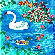 Sue Burgess Prints - Swan and duck Print by Sushila Burgess