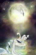 Swan Fantasy Art Framed Prints - Swan Dreams Framed Print by Carol Cavalaris