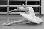 Wendy Potocki - Swan Lake Pose