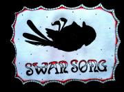 Winslow Photography Originals - Swan Song by Christopher  Chouinard