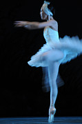 Susi Perla - Swan Twirl