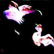 Swans Print by Adam Vance