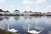 Nymphenburg Prints - Swans and Schloss Nymphenburg Print by Josephine Mok