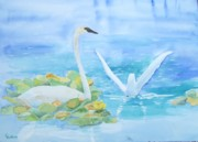 Waterfowl Paintings - Swans by Christine Lathrop