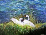 Swans... Paintings - Swans by Jamie Frier