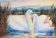 Swans... Paintings - Swans Mate for Life by Sukey Jacobsen