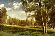 Sonya Kanelstrand Metal Prints - Swedish landscape Metal Print by Sonya Kanelstrand