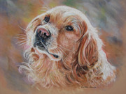 Retriever Pastels Posters - Sweet Bailey Poster by Colleen Quinn