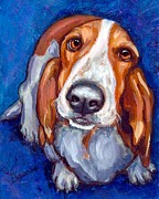 Basset Hound Framed Prints - Sweet Basset Looking Up on Blue Framed Print by Dottie Dracos