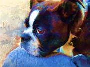 Puppies Digital Art - Sweet Boston Betty by Cindy Wright