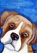 Boxer Painting Framed Prints - Sweet Boxer Portrait Framed Print by Tammy Brown