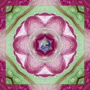 Mandala Photos - Sweet Dew by Bell And Todd