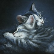 Cat Drawings Prints - Sweet Dreams Print by Cynthia House