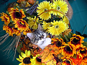 Kitteh Prints - Sweet Kitten in a Fall Flower Basket with Large Eyes Looking Up - Kitty Cat Grasping Autumn Leaves Print by Chantal PhotoPix
