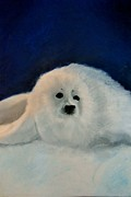 Christmas Card Pastels Prints - Sweet Little Winter Seal Pup of my Soul Print by AE Hansen