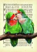 Rosy-faced Lovebird Posters - Sweet Nothing Poster by Suvi-Kukka Tuominen