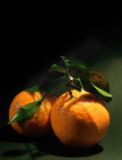Sweet Orange Print by Zeana Romanovna