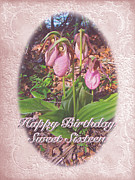 Ladys Slipper Photos - Sweet Sixteen Birthday Card - Pink Ladys Slipper Orchid by Mother Nature