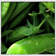 Local Food Art - Sweet Snap Peas by Penelope Moore