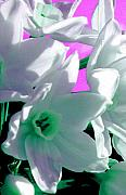 Impressionistic Photos - Sweet Surrender by JoAnn SkyWatcher