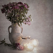Urn Photos - Sweet williams vintage by Jane Rix
