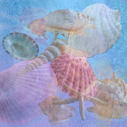 Seashell Digital Art Digital Art Posters - Swept Out With the Tide Poster by Betty LaRue
